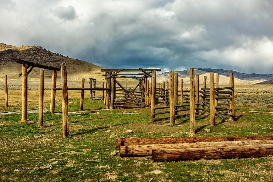Montana Photograph - Polehenge by Bryan Spellman