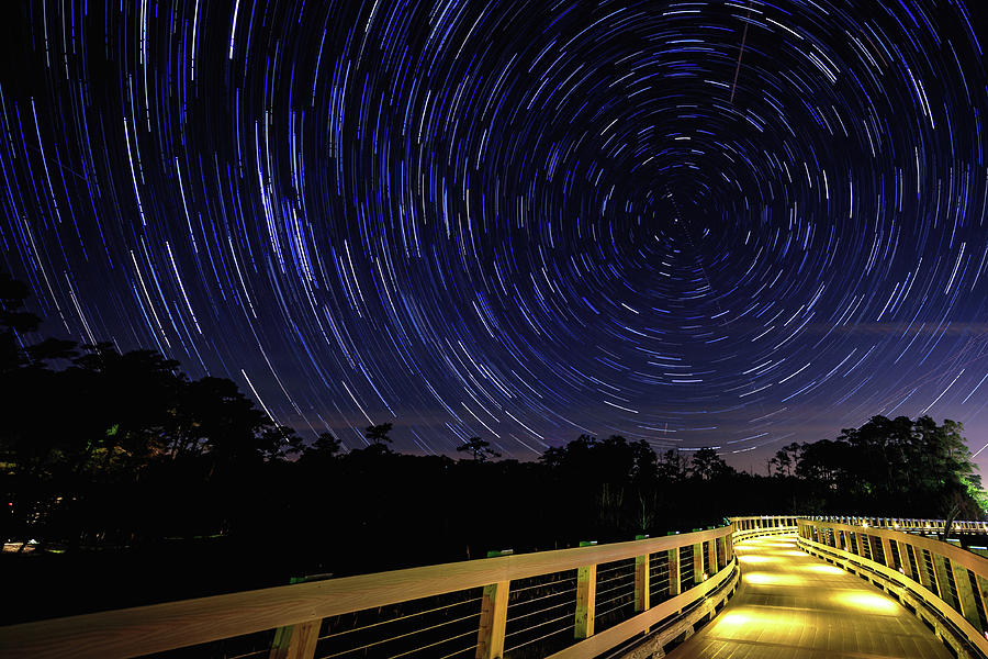 Polley Gully Startrails Photograph
