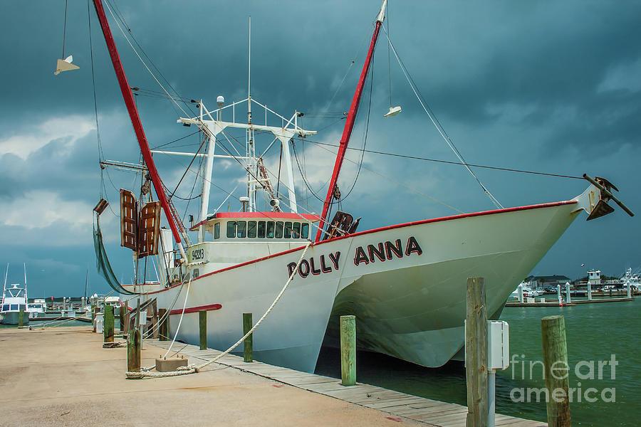 Polly Anna by Tony Baca