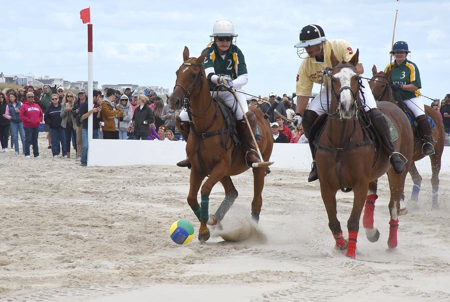 Polo 30 by Joyce StJames