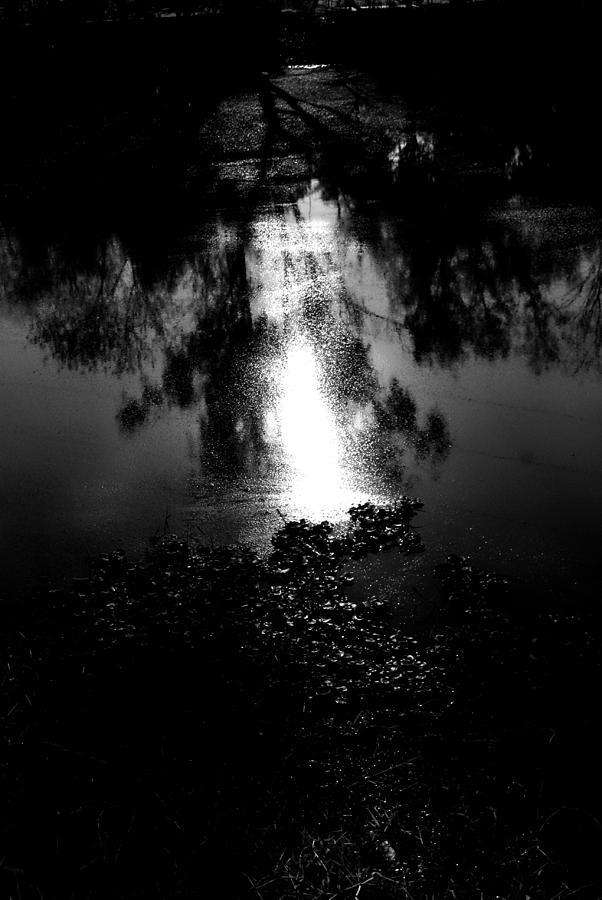 High Contrast Photograph - Pond by Oscar Vago