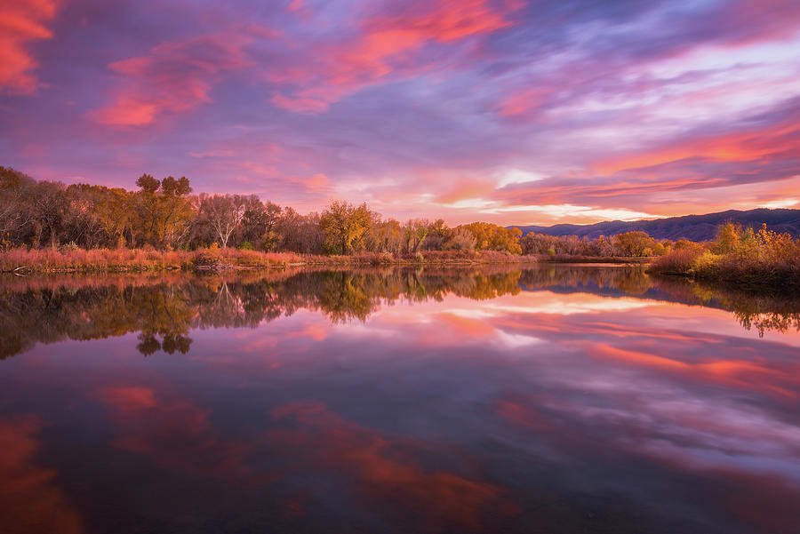 Ponds On Fire Photograph