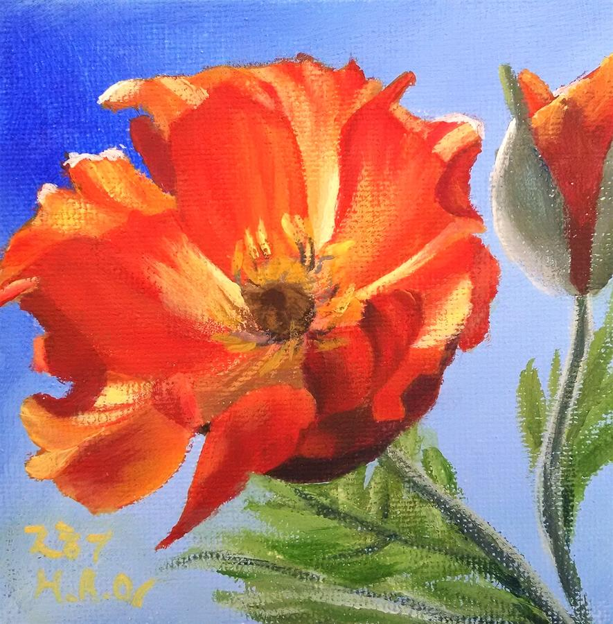 Poppy Flowers Painting - Poppy by Helian Osher