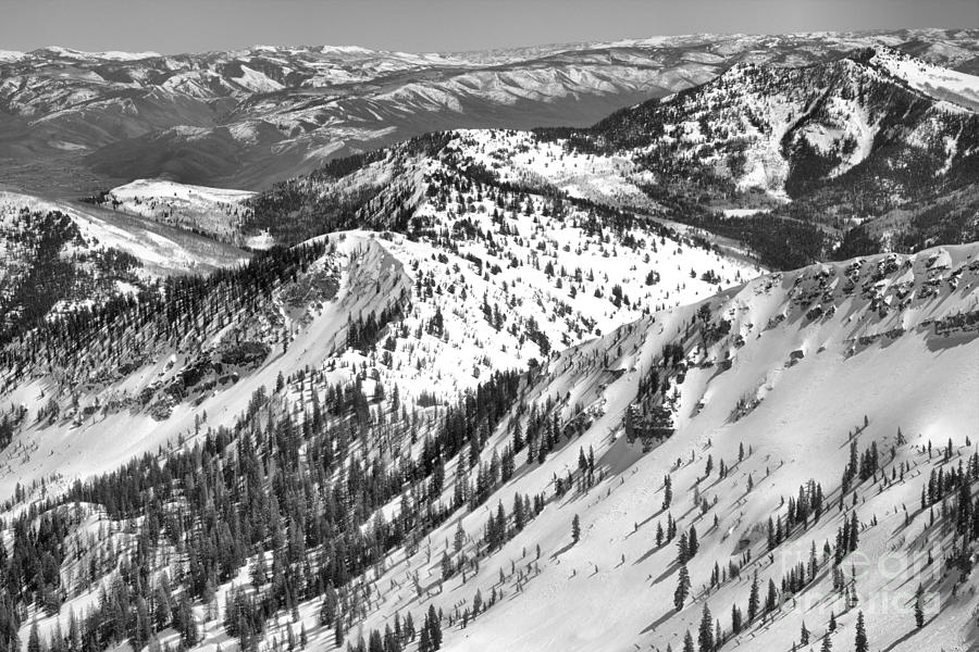 Powder Paradise And Beyond Black And White by Adam Jewell