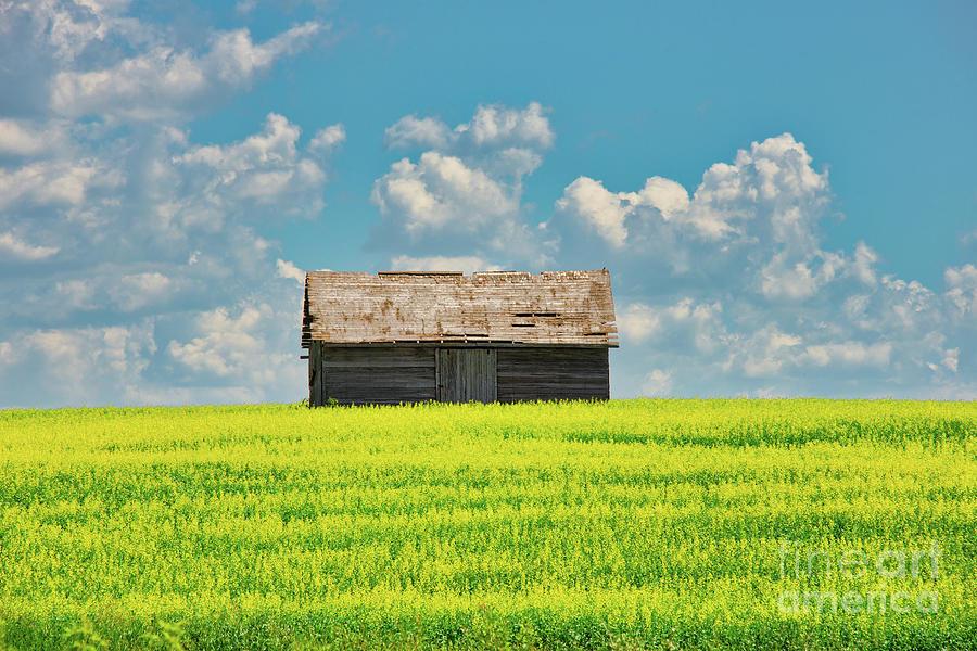 Farm Photograph - Prairie Barn by Ian McGregor