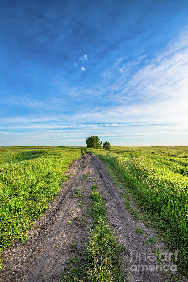 Canada Photograph - Prairie Road by Ian McGregor