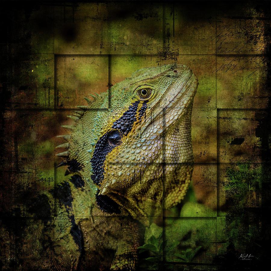 Prehistoric by Keith Hawley