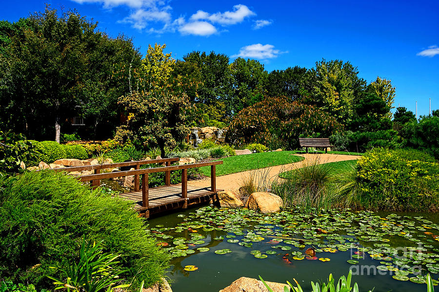 Pretty Botanical Gardens Dubbo 3 By Kaye Menner Photograph