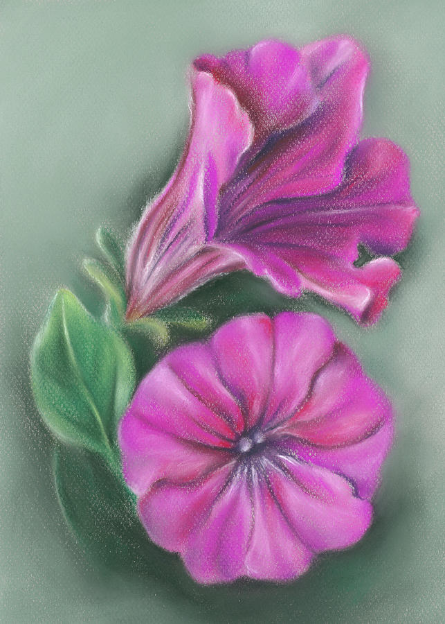 Pretty Pink Petunias by MM Anderson
