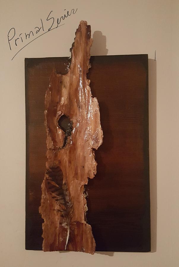 Primal Feather Bark 20201 by Cheryl Nancy Ann Gordon