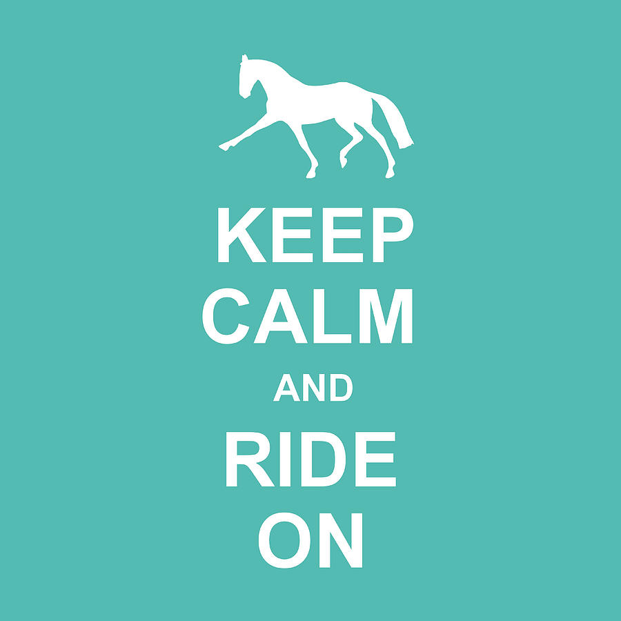 PRIX ST GEORGE AND KEEP CALM SQUARED by Dressage Design