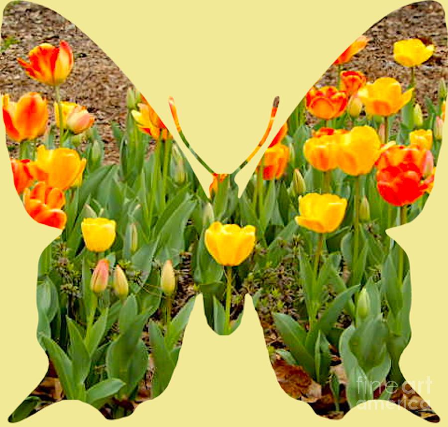 Butterfly Digital Art - Promise Of Spring by Karen Francis