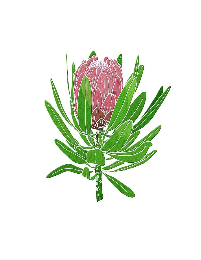 Protea Embroidery by Masha Batkova