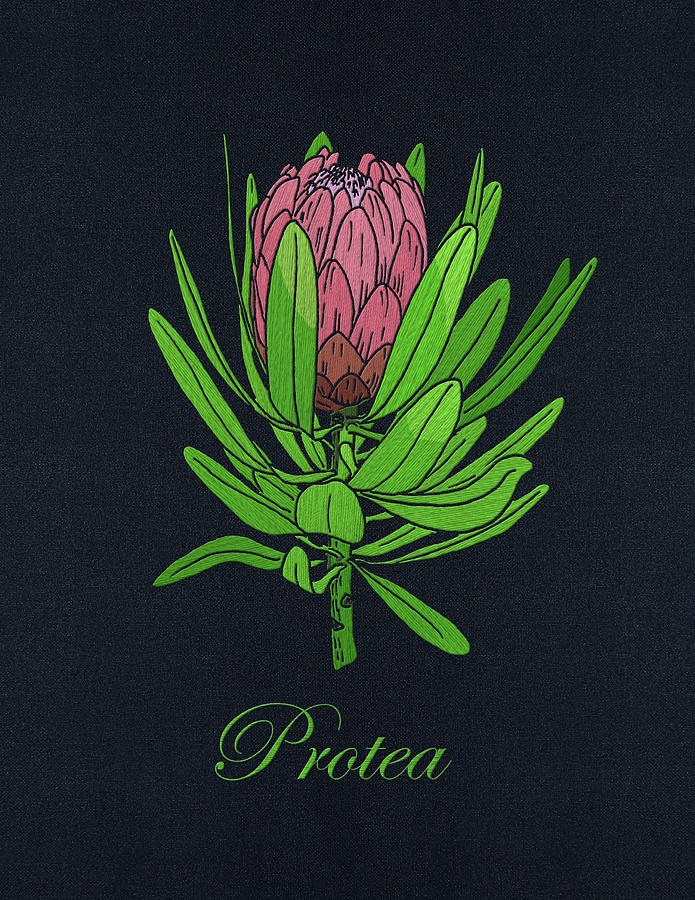 Protea Embroidery with text by Masha Batkova