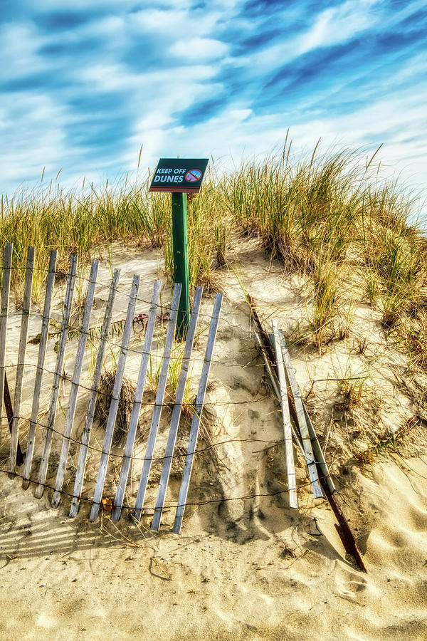 Protecting The Sand Dune by Gary Slawsky
