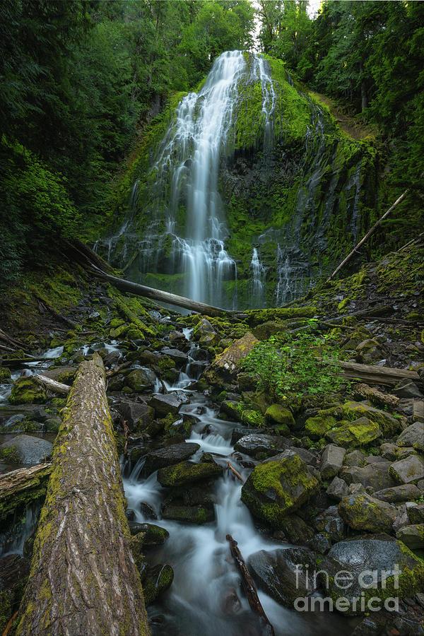 Proxy Falls, Oregon by Michael Ver Sprill