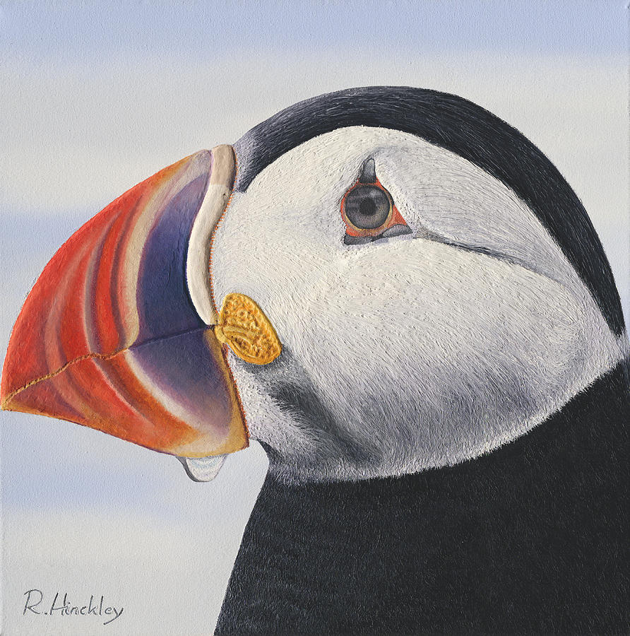 Bird Painting - Puffin by Russell Hinckley