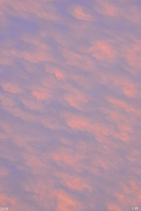 Puffy Pink Sky Vertical by Lisa Wooten