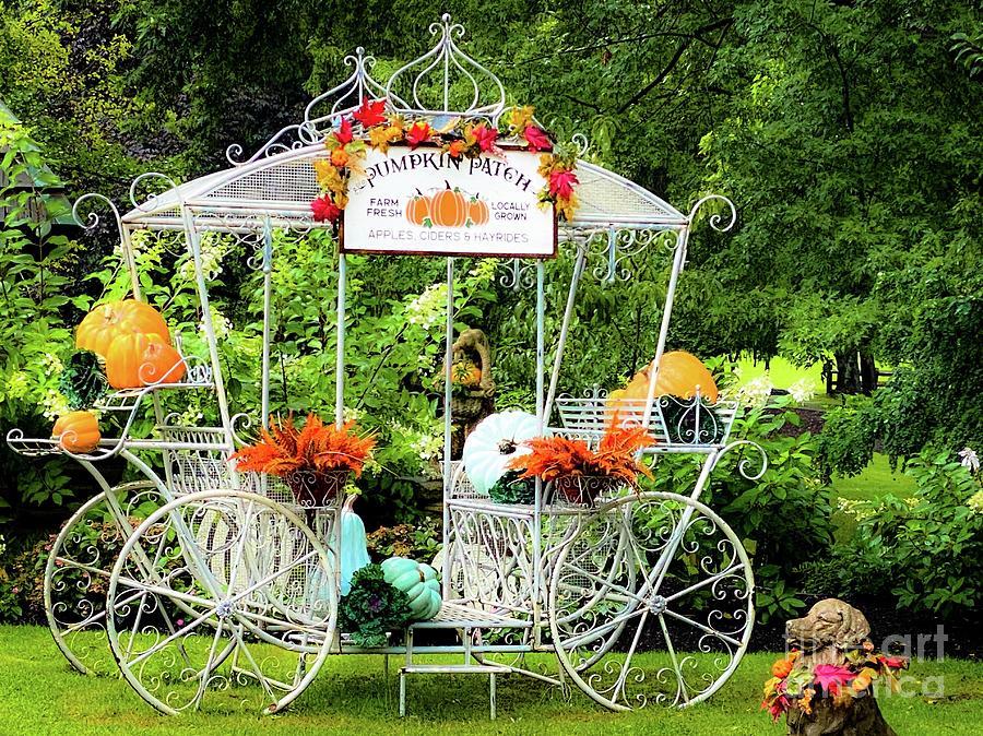 Pumpkin Patch Carriage Photograph