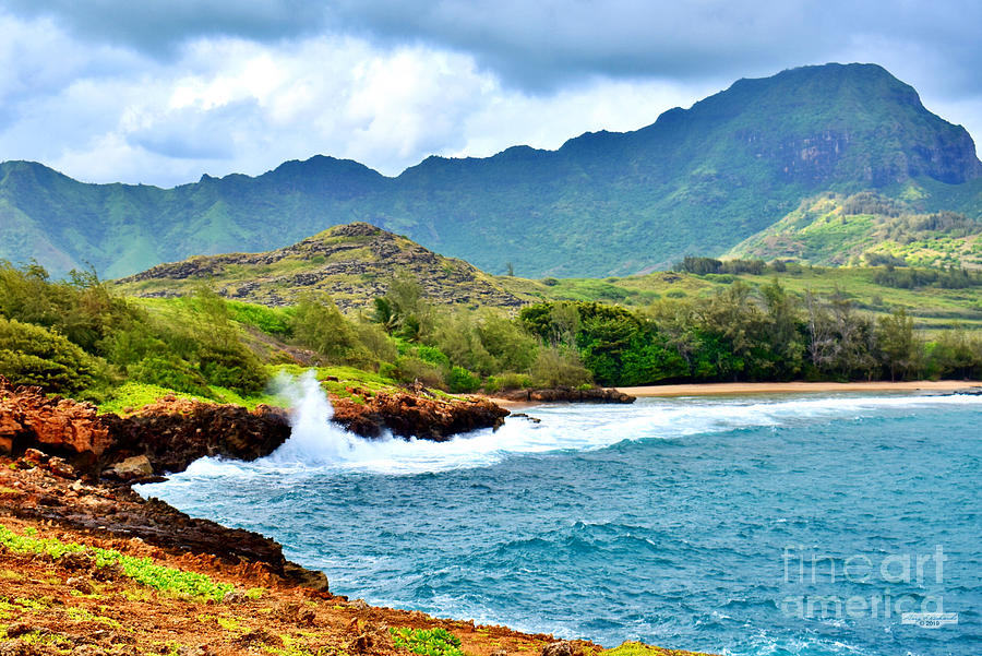 Punahoa Point Towards Gillins Beach by Gary F Richards
