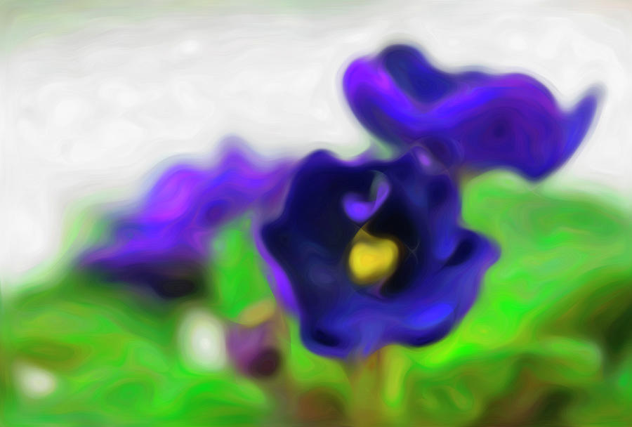 Purple African Violet Flowers - Abstract by Barbara Rogers