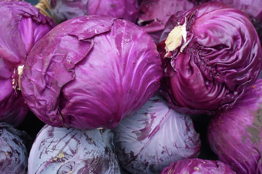 Purple Cabbage Photograph - Purple Cabbage by D Patrick Miller