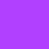 Purple Daffodil Digital Art
