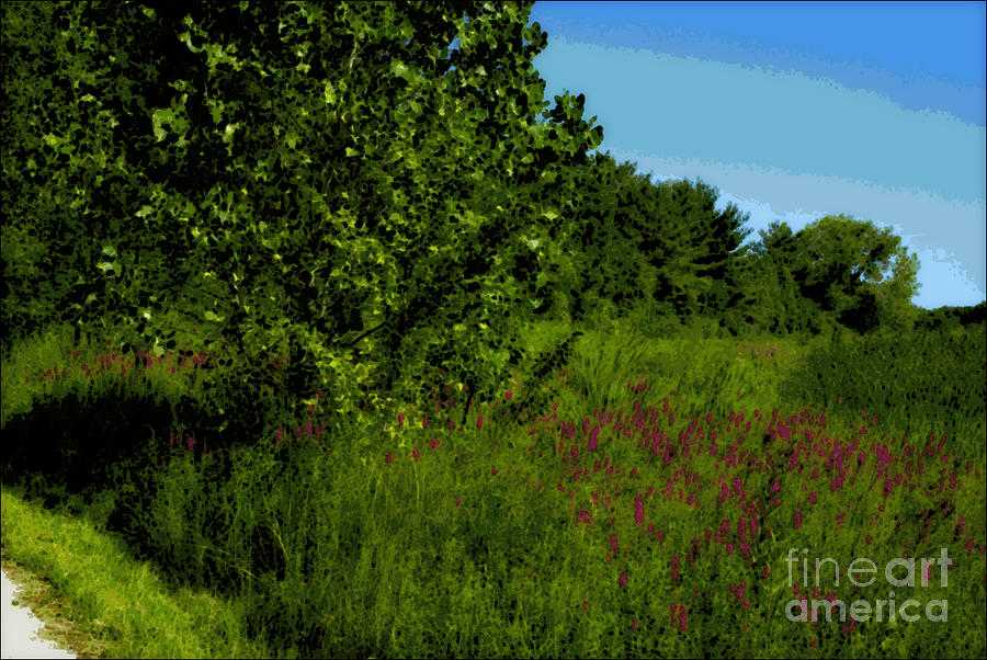Nature Photograph - Purple Flowers by the Trail - Impressionism by Frank J Casella