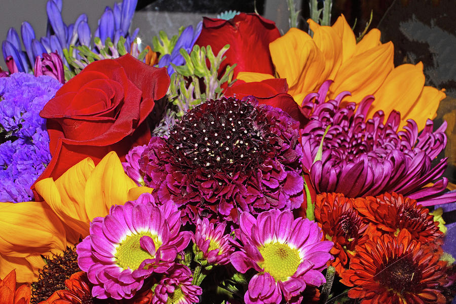 Purple Scabiosa Pincushion And Other Flowers 2 10162020 1189.jpg Photograph by David Frederick