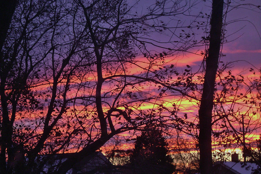 Purple Sky On Fire Photograph
