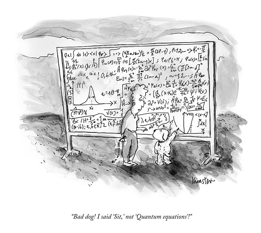 Quantum Equations Drawing by Ken Krimstein