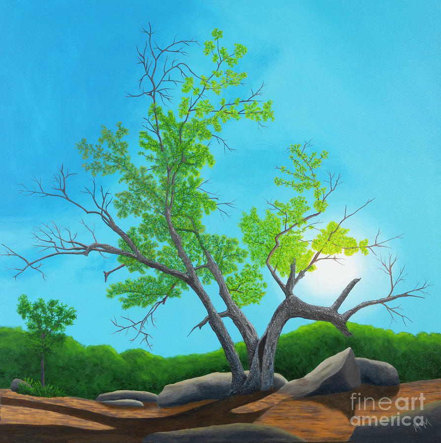 Quarry Tree by Garry McMichael