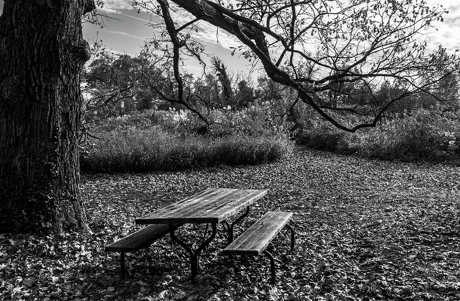 Quiet  by Amy Sorvillo