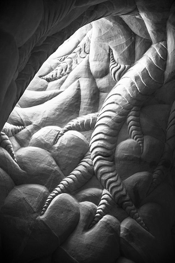 New Mexico Photograph - Ra Paulette Cave Sculpture by Candy Brenton