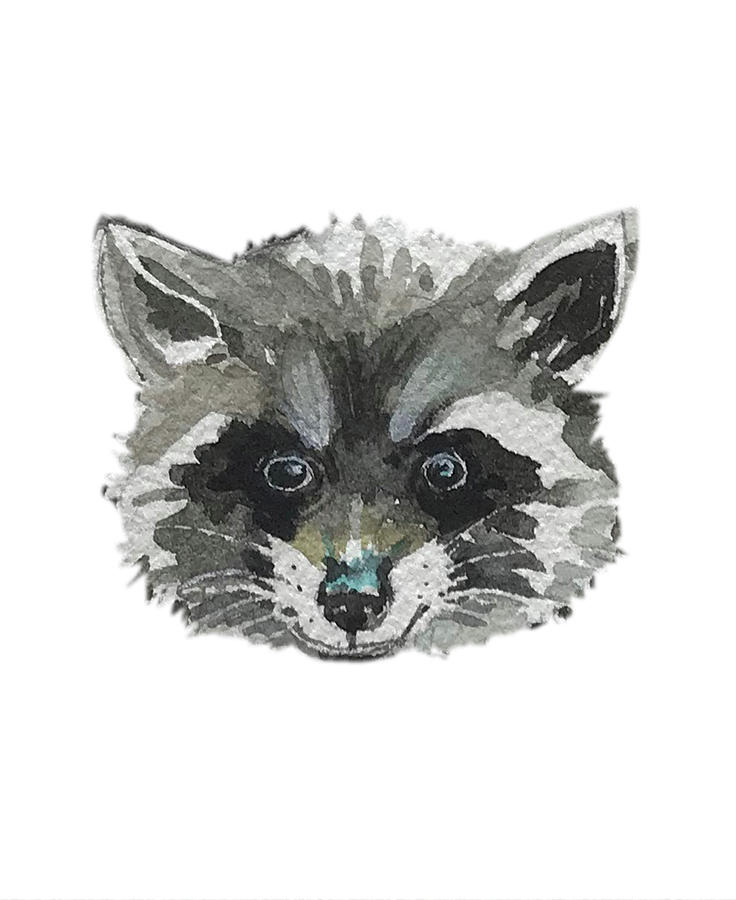 Raccoon Facemask Painting