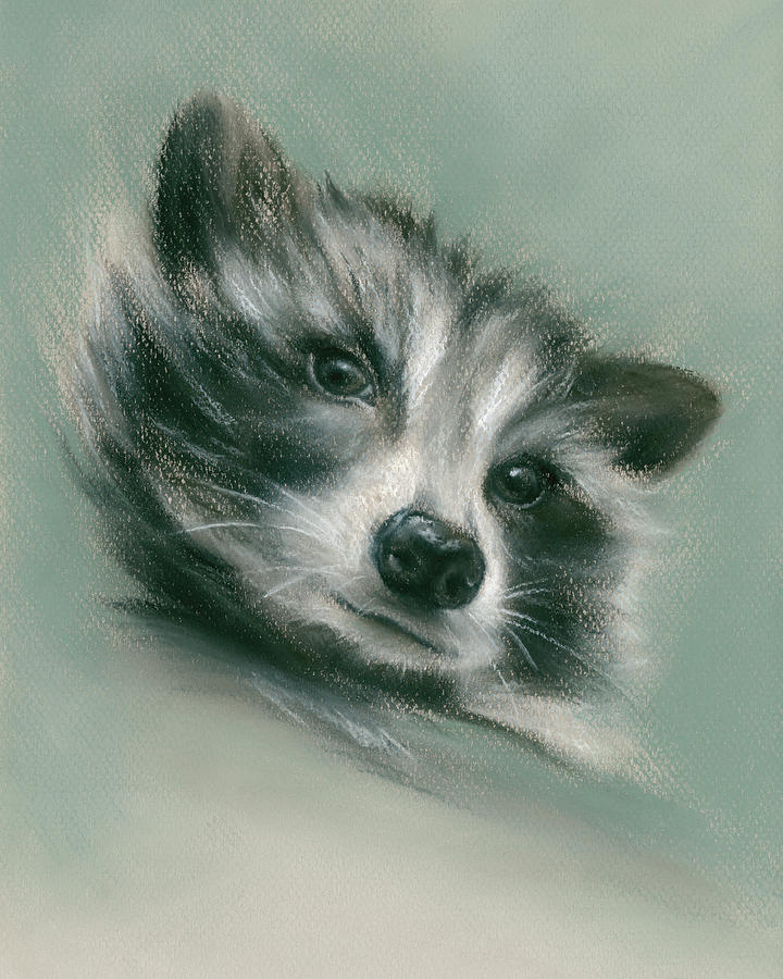 Raccoon Furry Woodland Creature by MM Anderson
