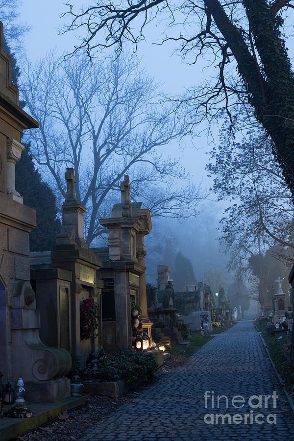 Rackowicki Cemetery  by Juli Scalzi