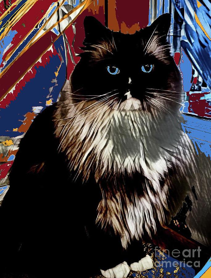 Cat Mixed Media - Ragdoll Abstract by dep Arts