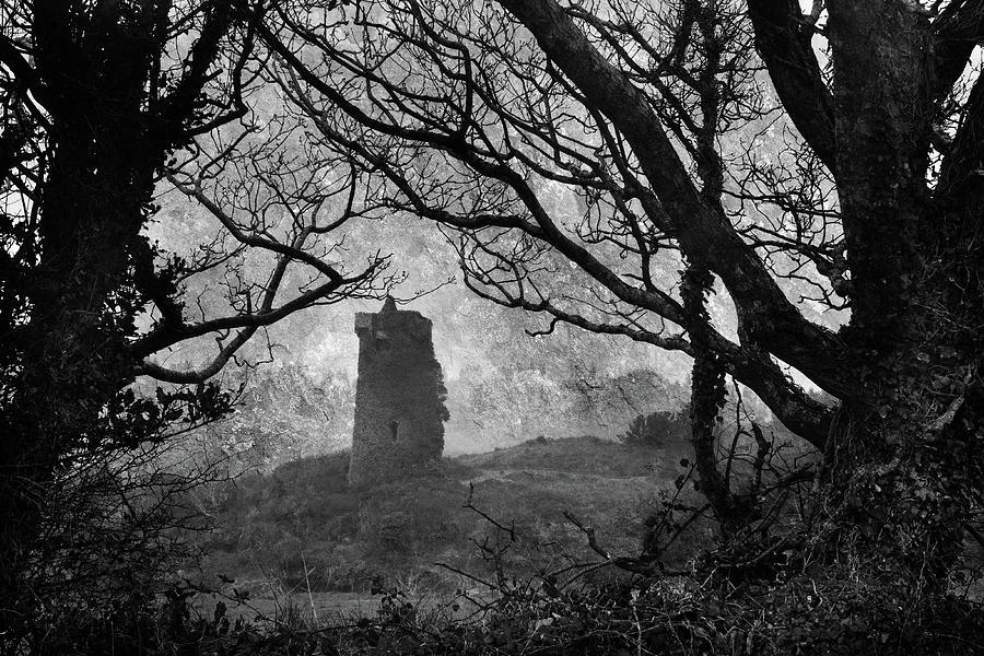 Raheen Castle Photograph