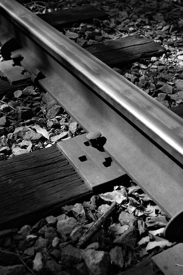 Railroad Rail by Karen Harrison
