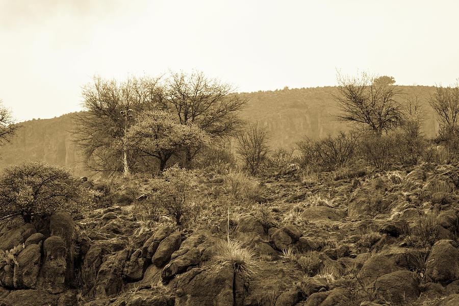 Rain On The Mountain 001223 Photograph