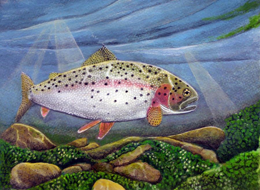 Trout Painting - Rainbow II by Rick Huotari