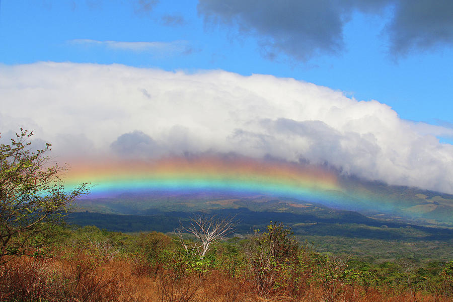 Rainbow Photograph - Rainbow by MaryJane Sesto