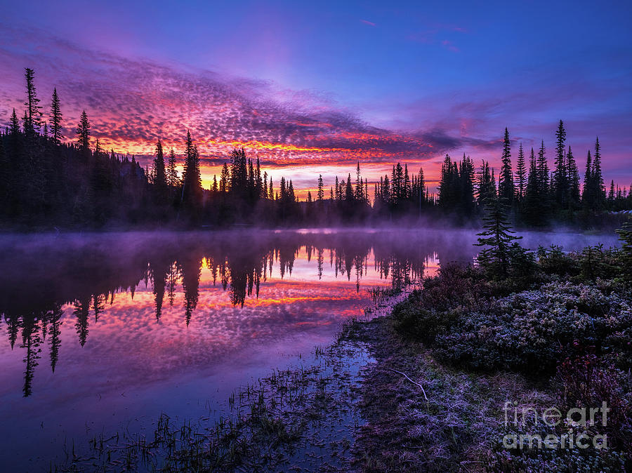 Rainier Reflection Lakes Sunrise and Frost by Mike Reid