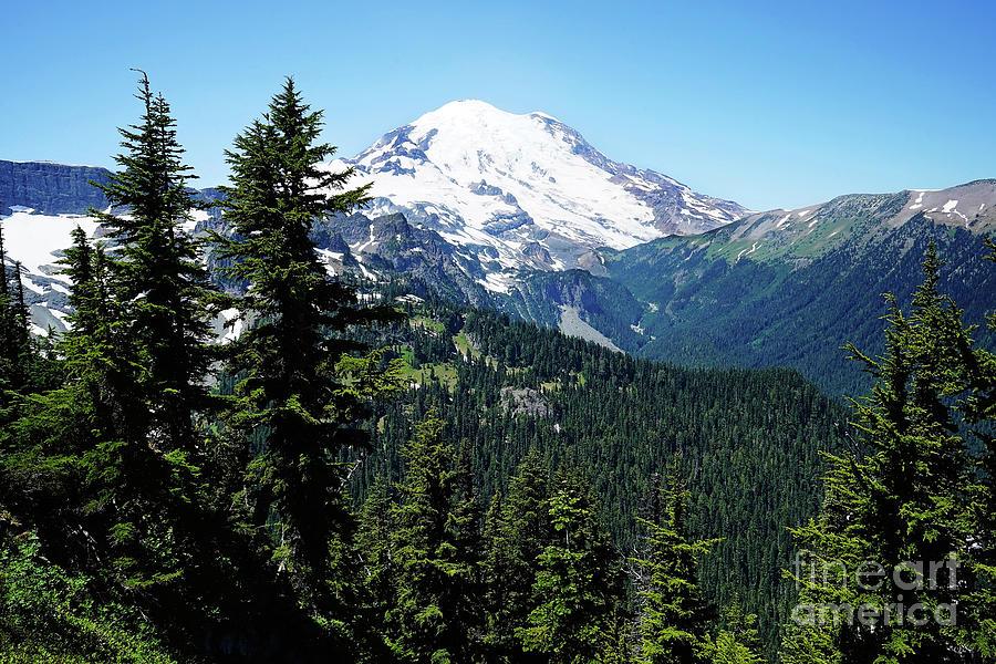Rainier View Photograph