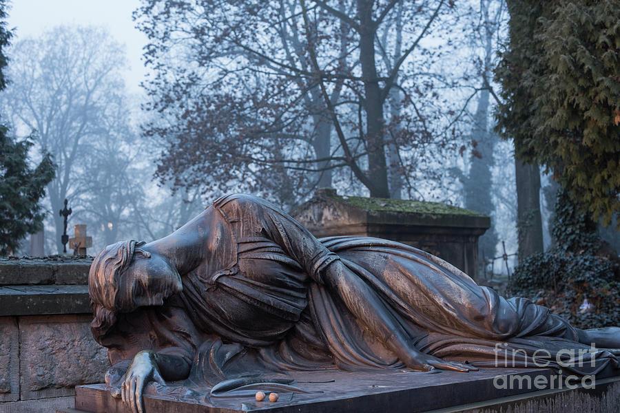 Rakowicki Cemetery by Juli Scalzi