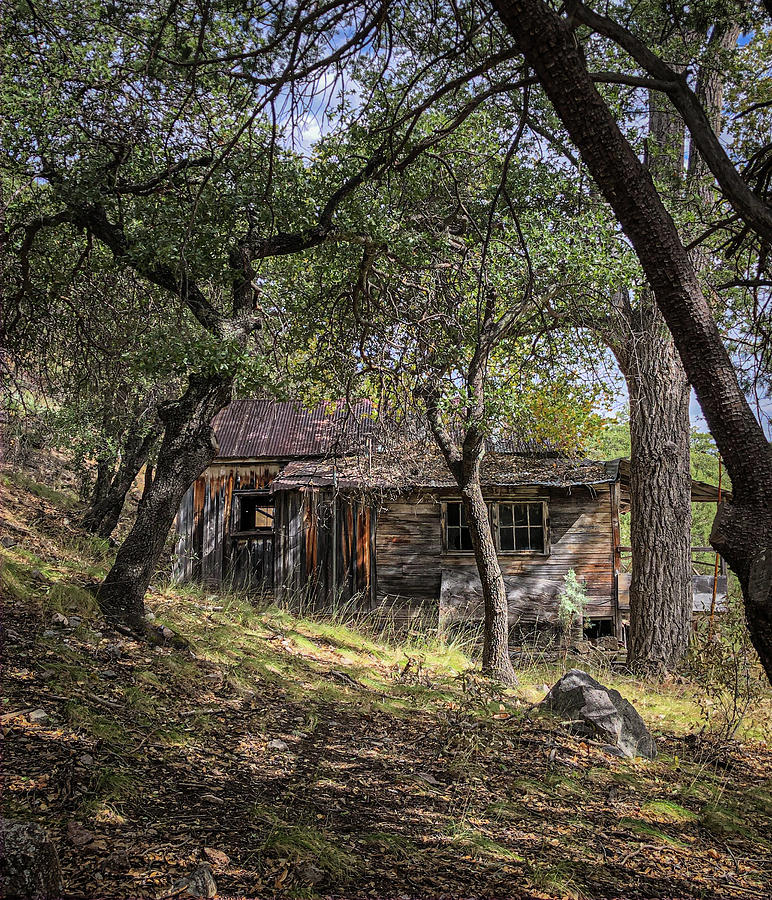Ramsey Canyon Cabin by Hershey Art Images