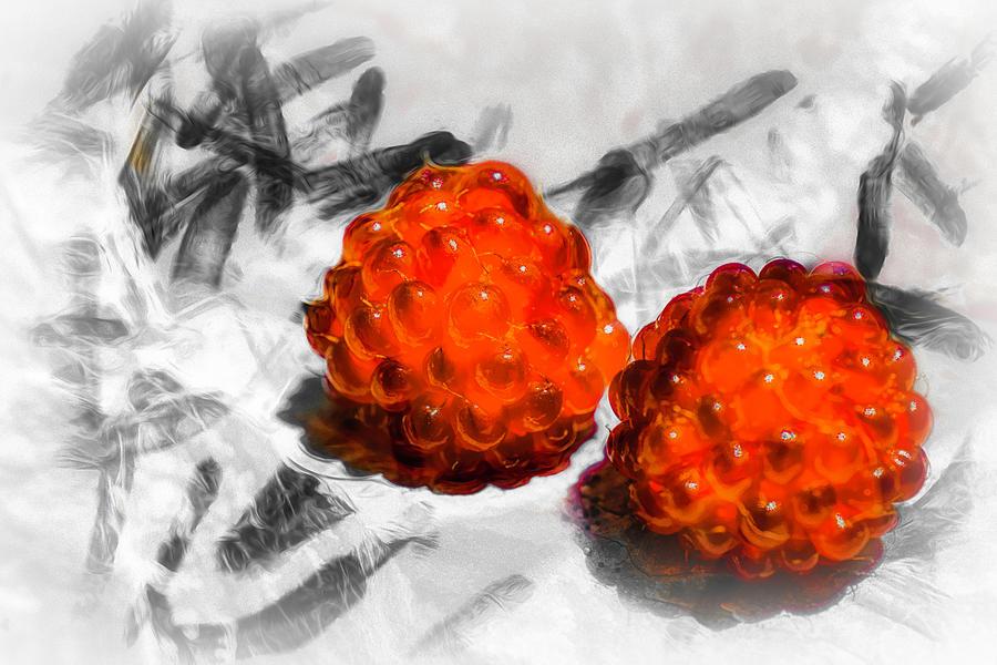 Raspberries Photograph