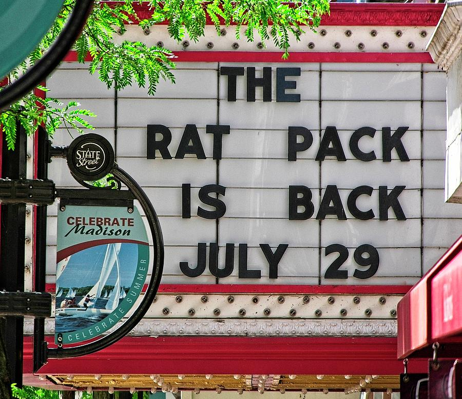 Rat Pack Is Back Photograph by Steven Ralser