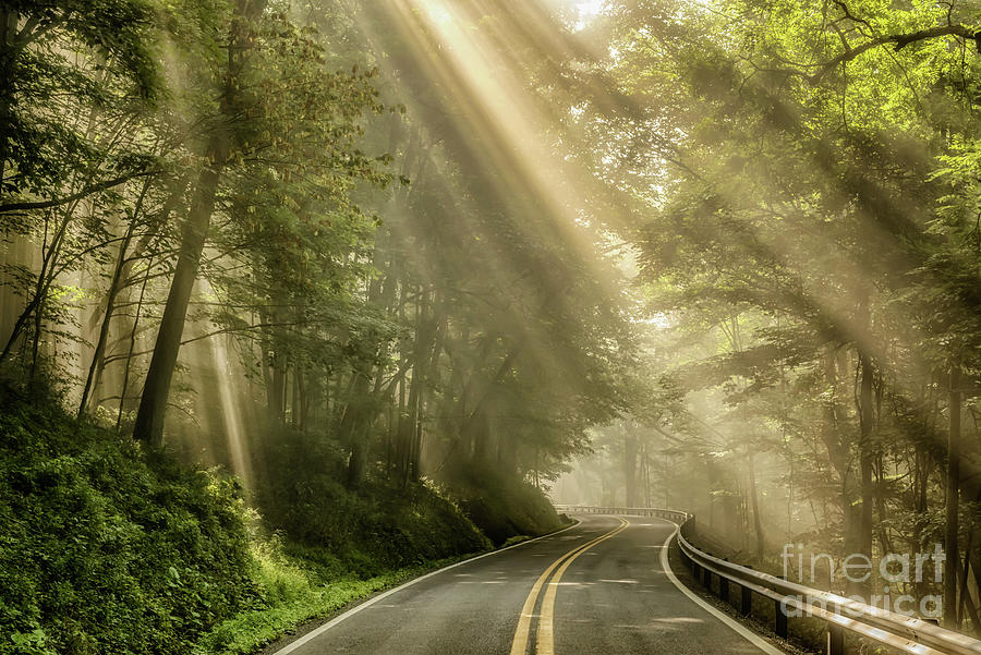 Rays Of Light Country Road Photograph